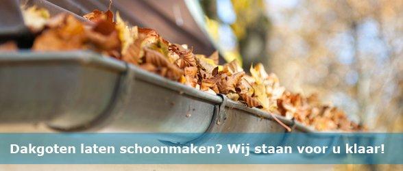 Dakgoten schoonmaken en reinigen Roosendaal